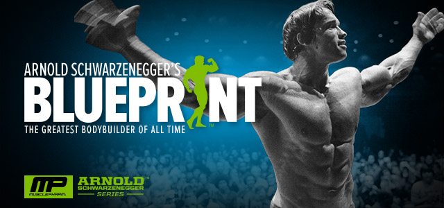 High Quality Arnold Schwarzenegger Blueprint Trainer
